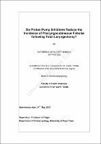 Dissertation multistatic china
